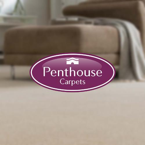 penthouse-carpets-2